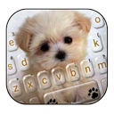 Innocent Puppy Keyboard Theme
