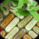 خواص دارویی گلها و گیاهان