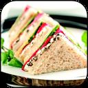 طرز تهیه 100 نوع ساندویچ