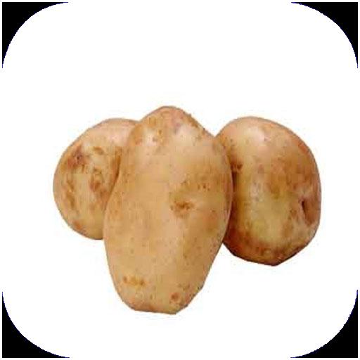 آموزش انواع غذا با سیب زمینی