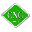 cng car