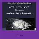 عوارض سوء مصرف کوکائین