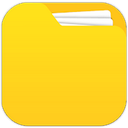 Professional file management