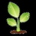 keeping plants