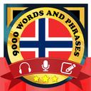 Learn Norwegian Free