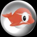 Fish Bowl Photo Gallery