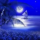 Night Beach Live Wallpaper