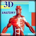 آموزش سه بعدی آناتومی انسان