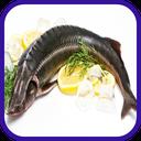 آموزش انواع غذا با ماهی