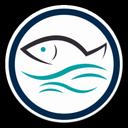 ماهی مارت