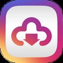 Instagram Professional Downloader