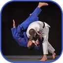 Judo in brief