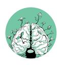 اسرار مغز انسان