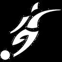Futsal Laws