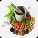 دنیای طب سنتی