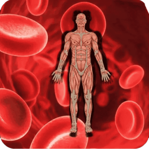 کم خونی , علائم و درمان کم خونی