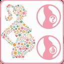 تغذیه بارداری ،برنامه غذایی بارداری