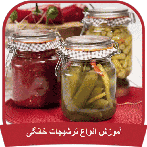 Learn all types of pickle