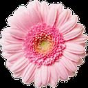 پیامک نورانی مذهبی -رایگان کامل icon