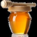 درمان بیماری ها با عسل