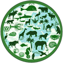 محیط زیست ایران