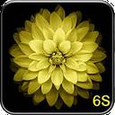 wallpaper iphone 6s