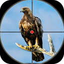 Desert Birds Sniper Shooter - Bird Hunting 2019