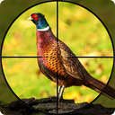 Pheasant Shooter: Crossbow Birds Hunting FPS Games