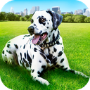 Dalmatian Dog Pet Life Sim 3D