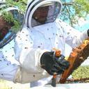 آموزش حرفه ای زنبورداری