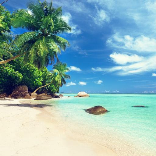Beach HD free Wallpapers
