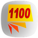 1100 لغت ضروری