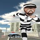 فرار زندانی