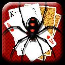 پاسور عنکبوتی