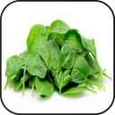Miracle spinach