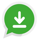 WhatsApp Professional Downloader