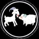 بیماری های گوسفند و بز