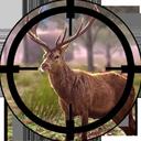شکارچی