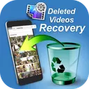 Disk video recovery undeleted videos: video backup