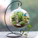 باغ شیشه ای،تراریوم