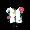 BTS Audio Board