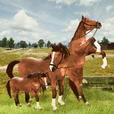 Virtual Horse Family Wild Adventure