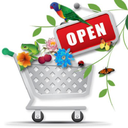 ساخت فروشگاه اینترنتی و کسب درامد