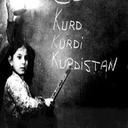 زبان کردی