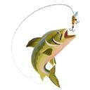 ماهیگیر باشی
