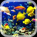 3D Real Aquarium Live Wallpaper