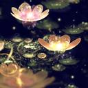 Water Lantern Live Wallpaper