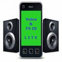 Voice FS caller Id Lite