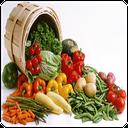 آشپزی با سبزیجات