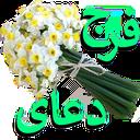 doaye farag